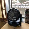 静かな扇風機♪(824回)